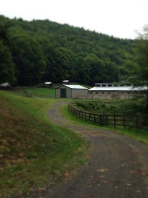 Trail to Ring & Barn - Copy