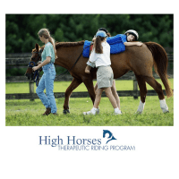 Physical Therapy Horseback Presentation