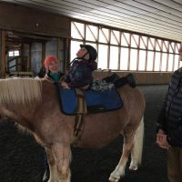 Hippotherapy Volunteer Training