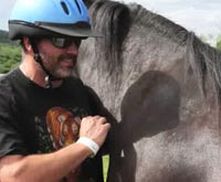 High Horses riding program for Vets
