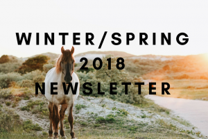 Winterspring 2018newsletter